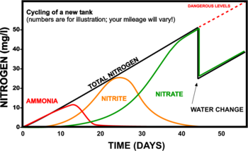 The nitrogen cycle the free freshwater and saltwater aquarium cycling graphg ccuart