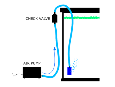 Airpump checkvalve diagram.png